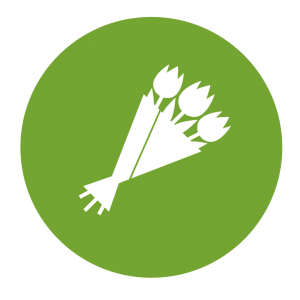 bromfiets verzekering msk icon
